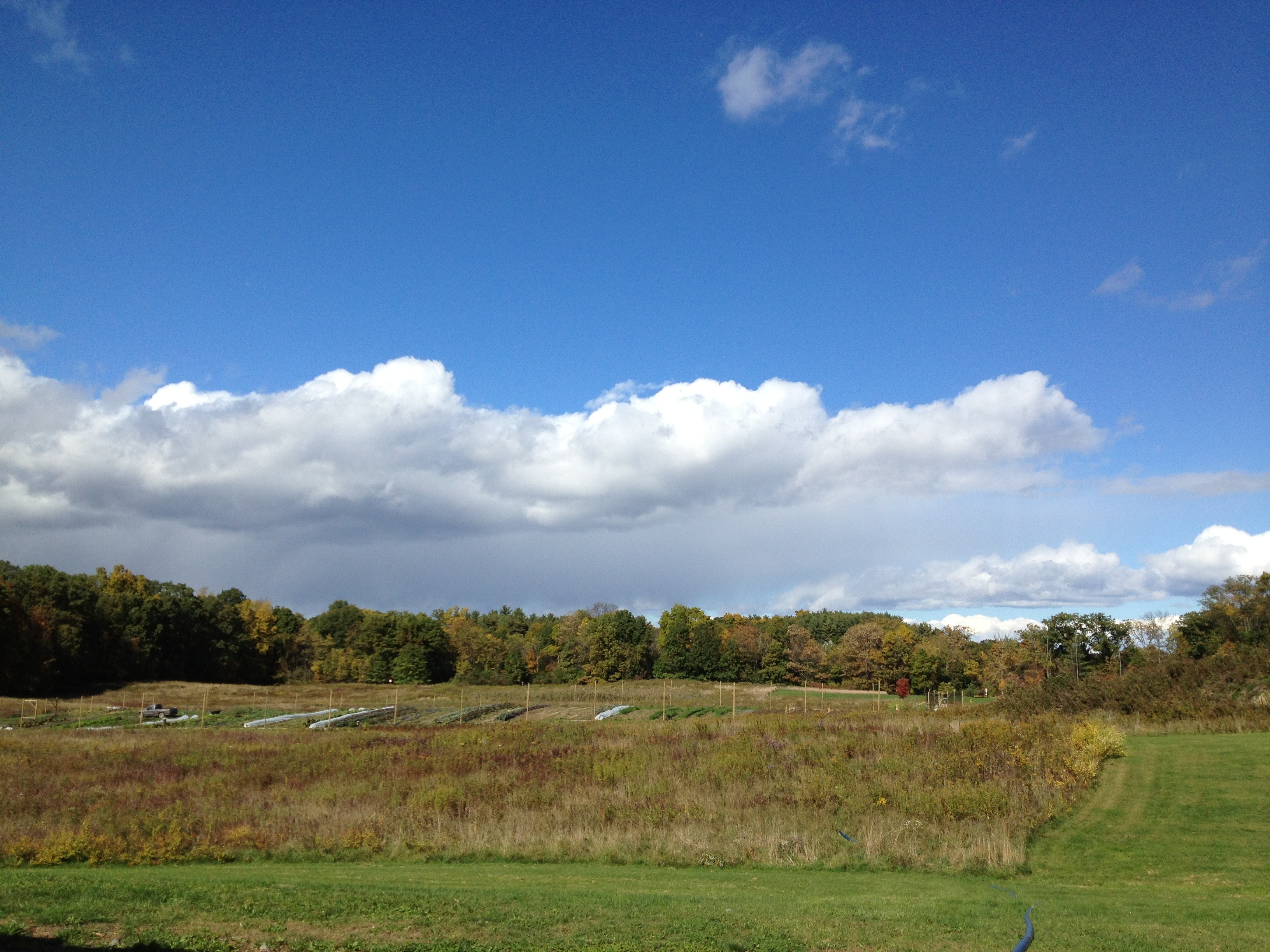 View of Bard Farm, 2012